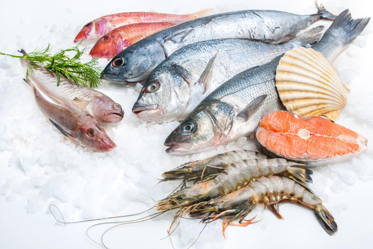 ryby jsou důležitou potravinou pro Vaše oči díky obsahu Omega 3 mastných kyselin